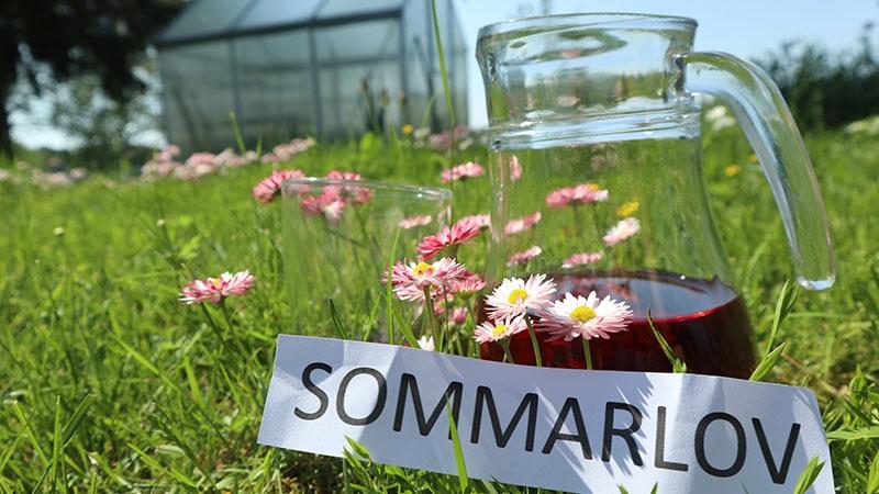 En blomsteräng, en kanna vatten och en lapp med ordet sommar